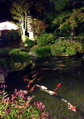 The tranquil gardens at Nanzenji Junsei restaurant.