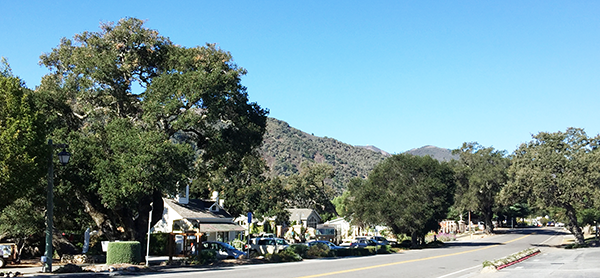 Downtown Carmel Valley