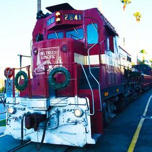 Santa Cruz Christmas Train