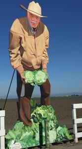 Salinas Cabbage Man