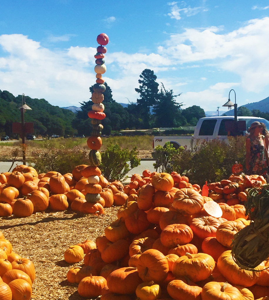 Earthbound Farm Pumpkin Stack