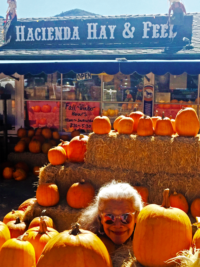 Hacienda White Haired Pumpkin